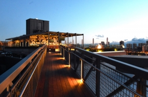 600 West Chicago Roof Deck (1)